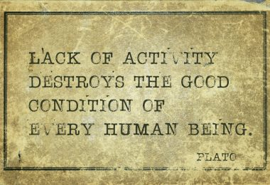 Lack of activity destroys the good - ancient Greek philosopher Plato quote printed on grunge vintage cardboard