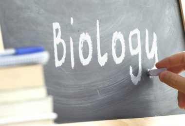 the word biology written on a chalk board